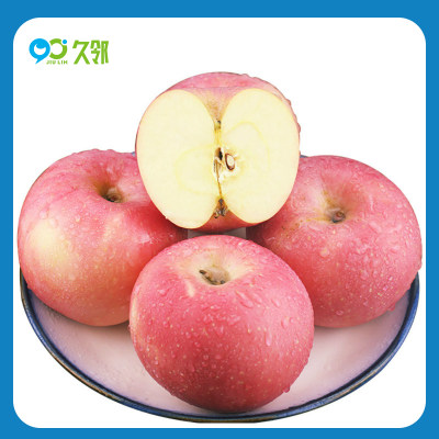 【久邻严选】烟台红富士苹果约5斤