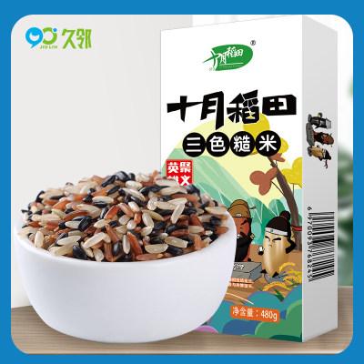 【久邻严选】十月稻田三色糙米饭960g